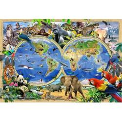 Mapa del reino animal -...