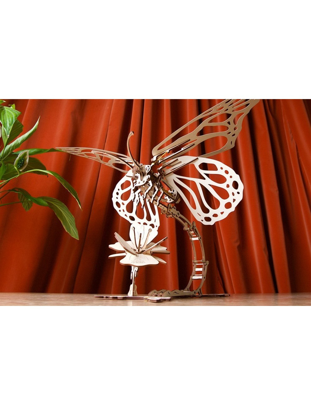 Mariposa (Butterfly)